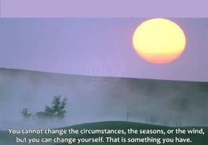 you-cannot-change-the-circumstances
