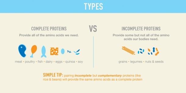 MyFitnessPal-Nutrition-101-Protein-e1379399713160 (2)