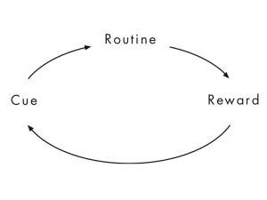 habit-cycle